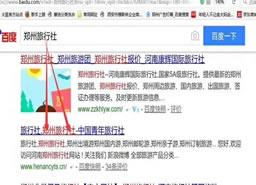 郑州旅行社百度排名案例