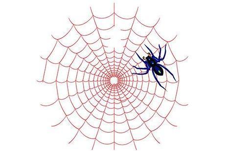 如何禁止蜘蛛抓取网站